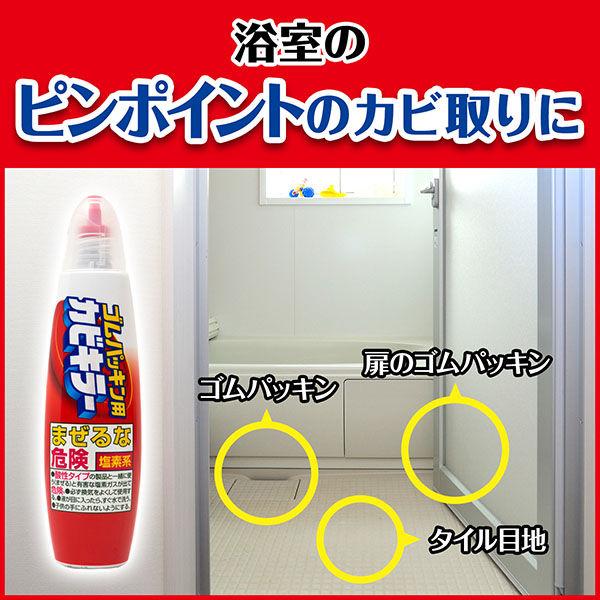ゴムパッキン用カビキラー100g