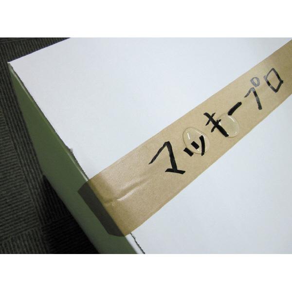 マッキープロ 特殊用途DX 太字 赤 5本 油性ペン ゼブラ