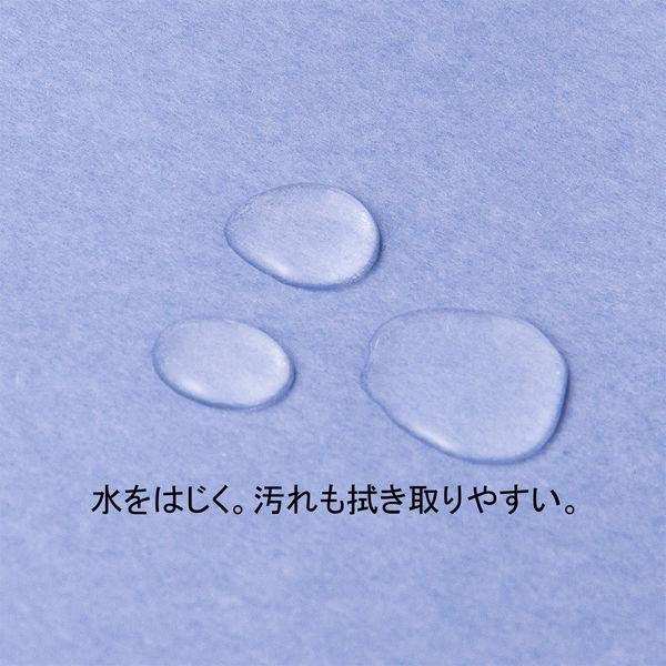 アスクル 背幅伸縮ファイル(PPラミネート表紙) つづりひもタイプ A4タテ ブルー 3冊