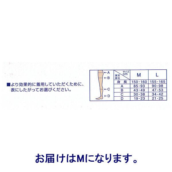 ヒップアップサポート付 ストッキング M