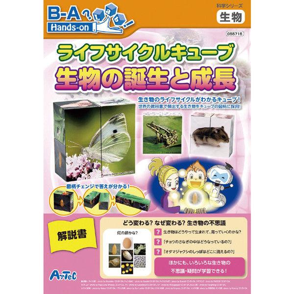アーテック ライフサイクルキューブ生物の誕生と成長 55715 (直送品)