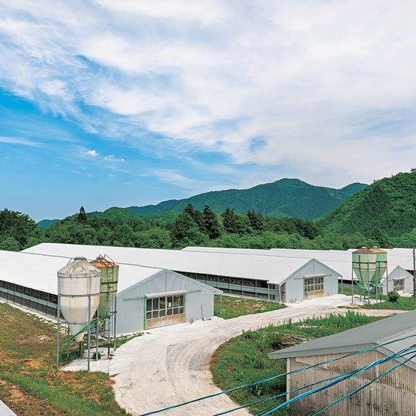 秋川牧園 ローストチキンハーフ
