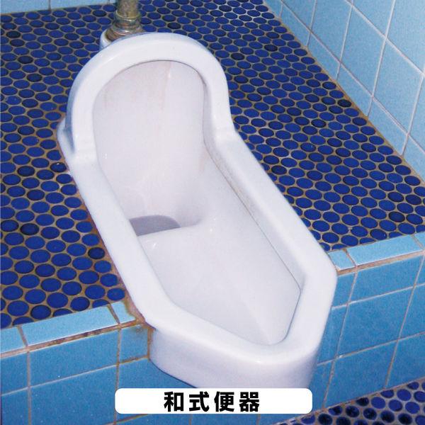 復活洗浄剤 トイレ陶器クリーナー 100ML #00017660132100 カンペハピオ(直送品)