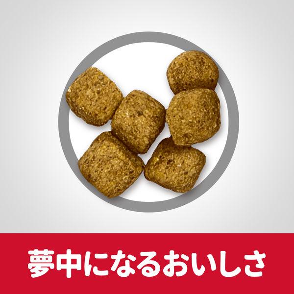 サイエンスD 小粒 肥満高齢犬×2袋