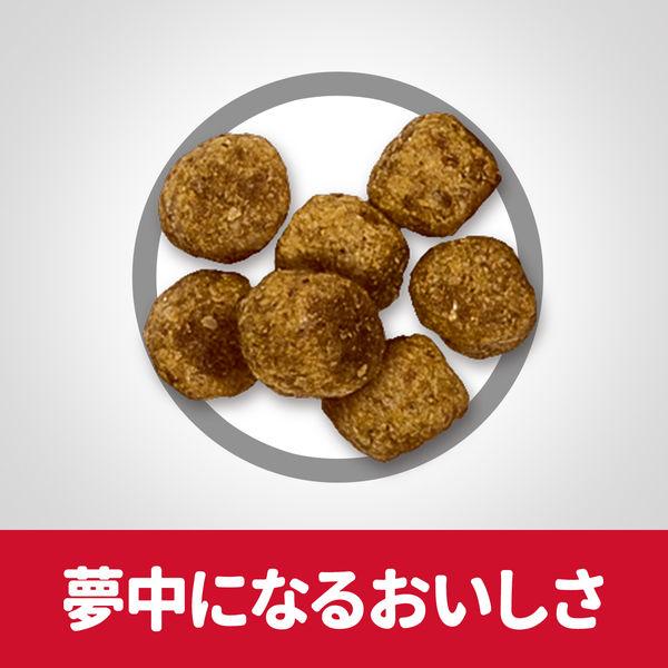サイエンスD 小粒 肥満成犬×2袋