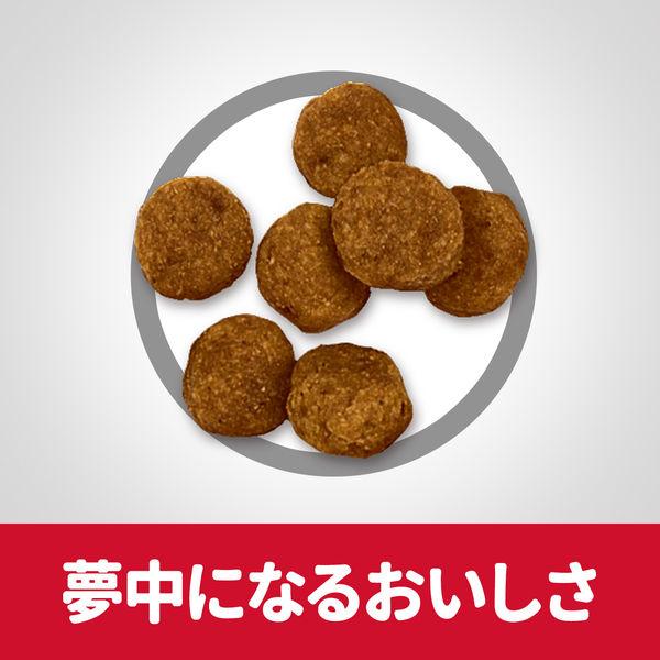 サイエンスD 小粒 成犬 6.5kg×2
