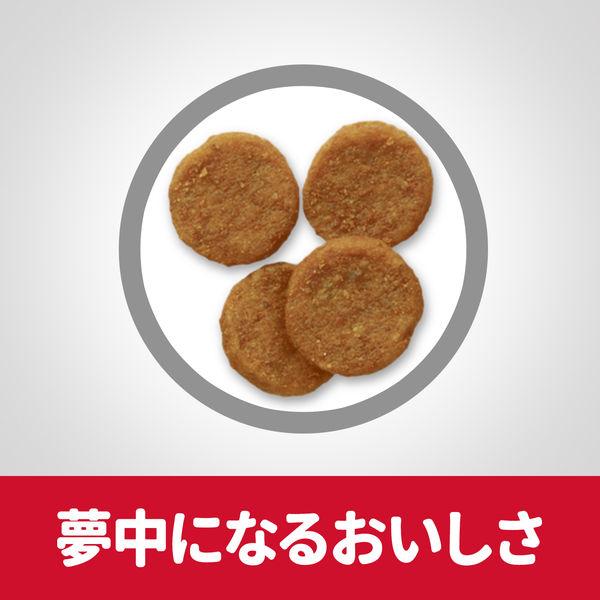 サイエンスD 成犬用 6.5kg×2袋