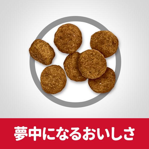 サイエンスD 小粒 高齢犬×2袋