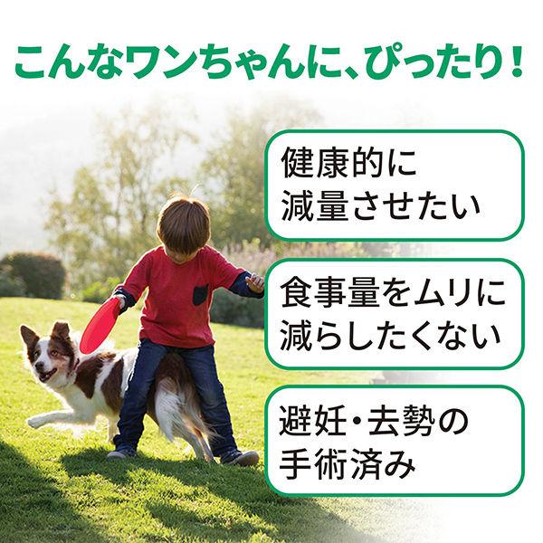 サイエンスD 減量サポ小粒 小中型犬×2