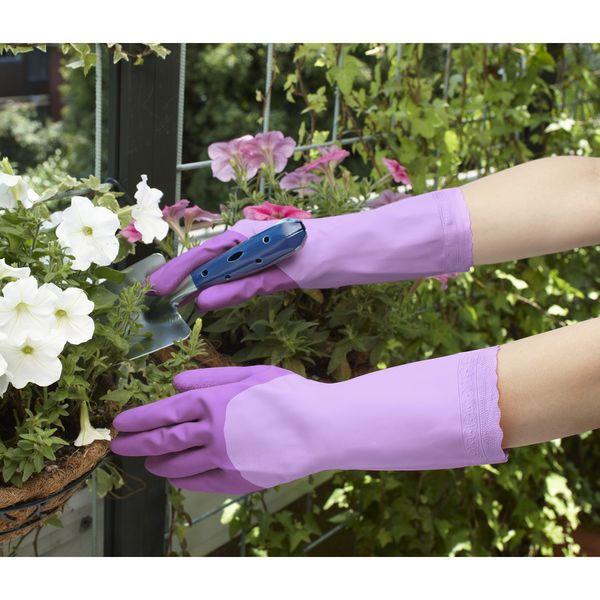 ファミリー ビニール手袋 厚手 M 紫