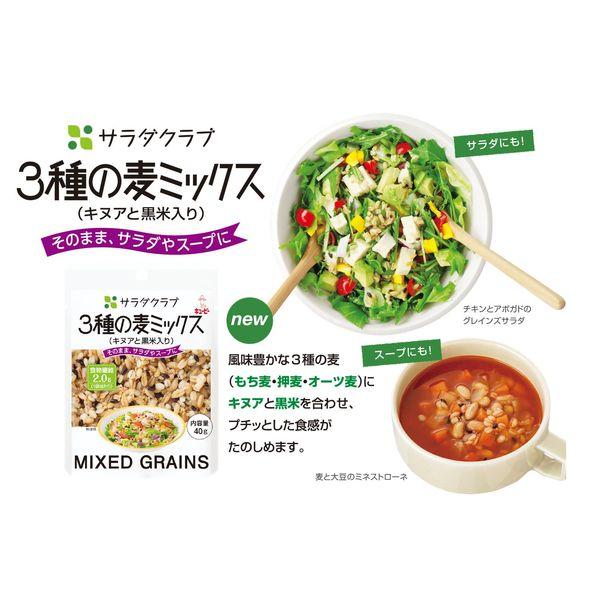 3種の麦ミックス(キヌアと黒米入)10個