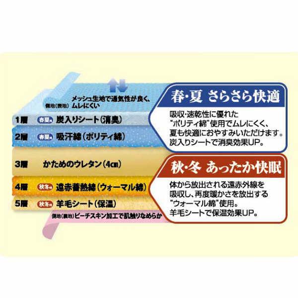 アイリスオーヤマ 敷布団 5層式 ダブル FGS-D 1枚 (直送品)