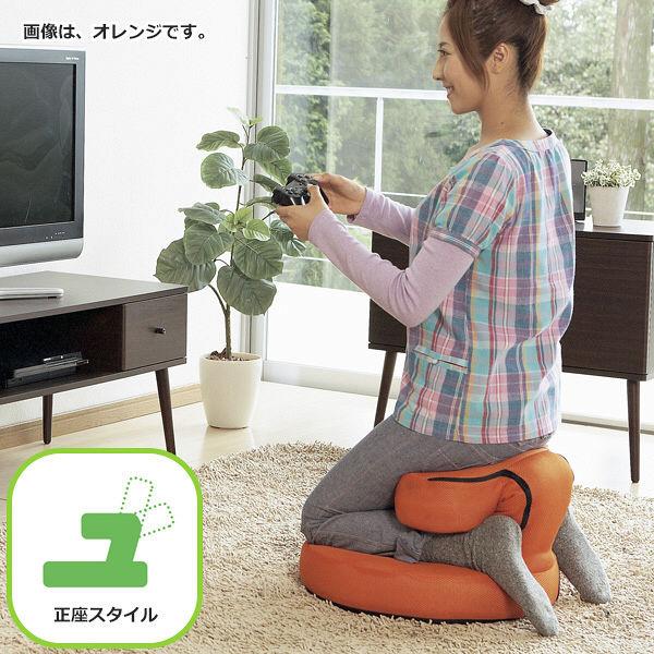 宮武製作所 欲張り多機能ゲーム座椅子 オレンジ (直送品)