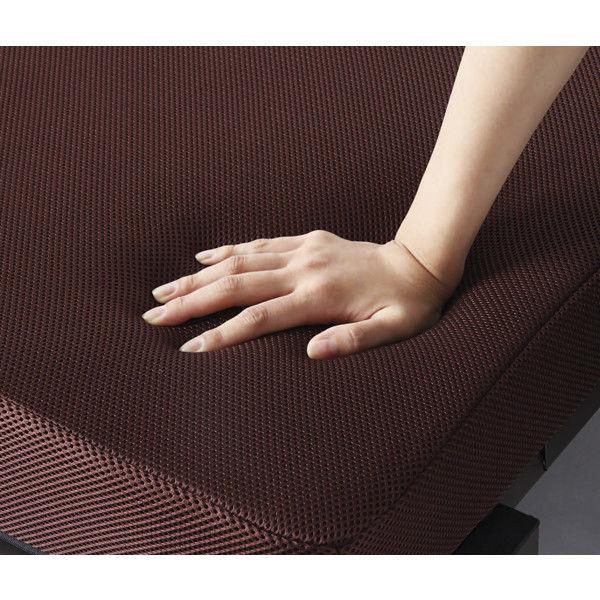 アイリスオーヤマ 折りたたみベッド 幅910×奥行2010×高さ345mm OTB-TRN 1台 (直送品)