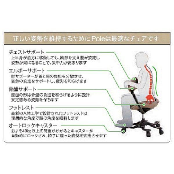 吉桂 iPole7(アイポール7) オフィスチェア ストッパー付キャスター ナチュラルレザー グレー J0034 1脚 (直送品)