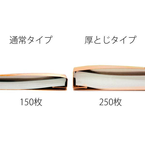 プラス PPフラットファイルA4S厚とじOR 98340 (直送品)
