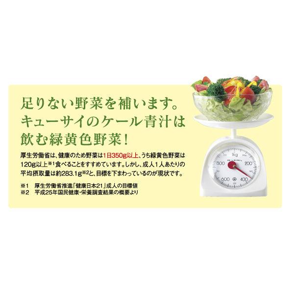 ケール青汁(粉末タイプ)1箱(30包入)