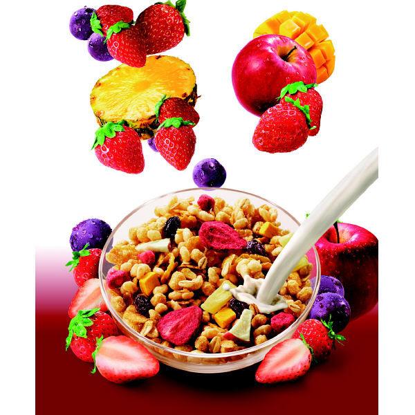 5種の彩り果実 脂質80%オフ 1袋