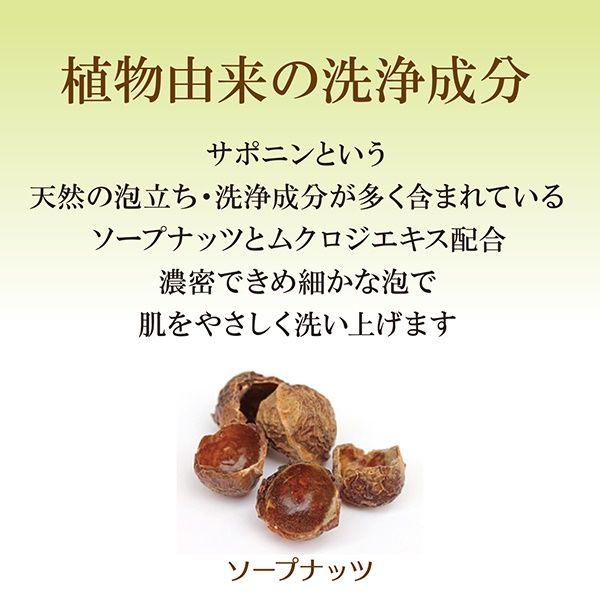 世田谷コスメ ハニーフェイスウォッシュ