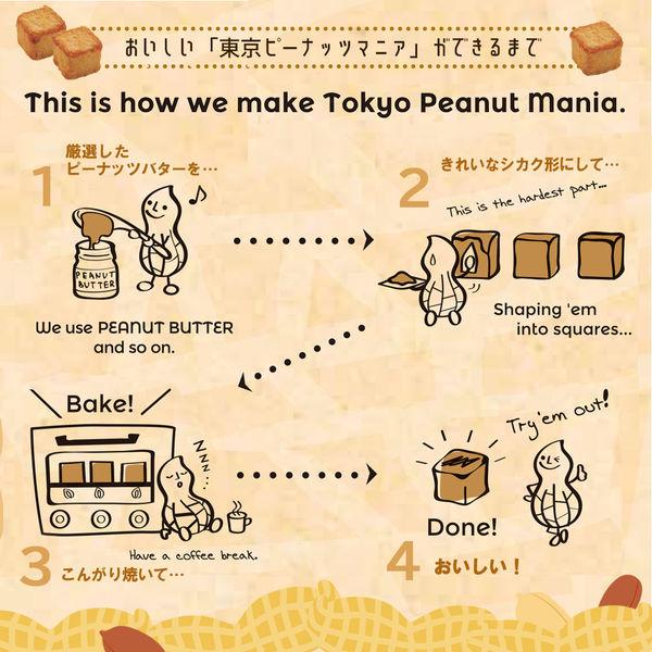 東京ピーナッツマニア 箱(15粒) 1箱