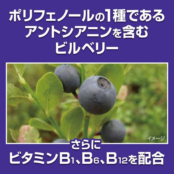 小林製薬の栄養補助食品 ブルーベリーEX