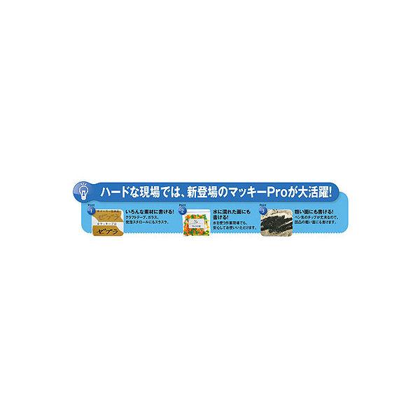 マッキープロ 特殊用途DX 太字 赤 10本 油性ペン ゼブラ