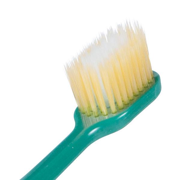 ディープクリーン 歯ぐきケア ふつう