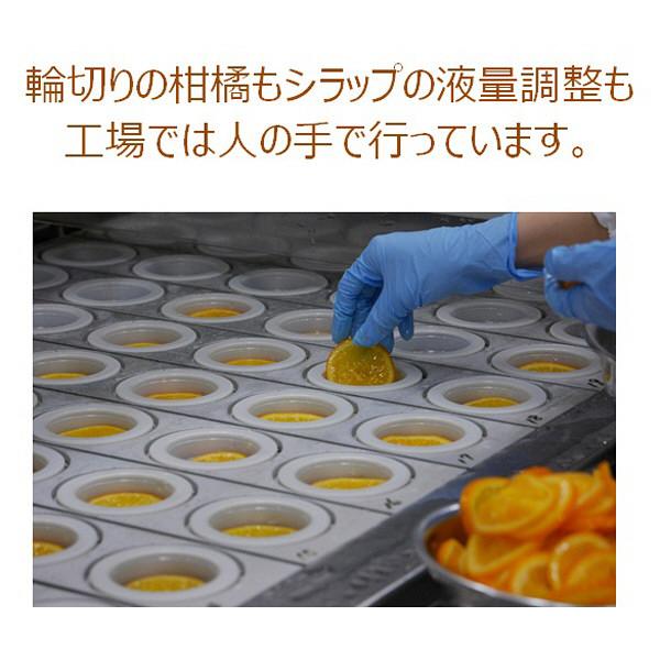 アヲハタティータイムL&N4個入×6箱