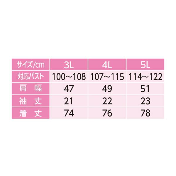婦人3分袖大寸ホックシャツ ホワイト 5L 38114-14 (取寄品)