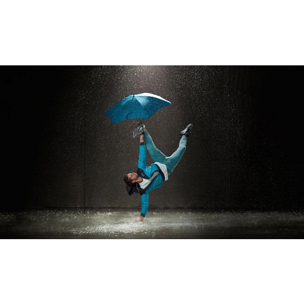 ブラント 女性用長傘 ローズ
