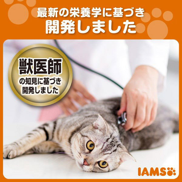 箱売アイムス成猫インドアまぐろ1.5kg