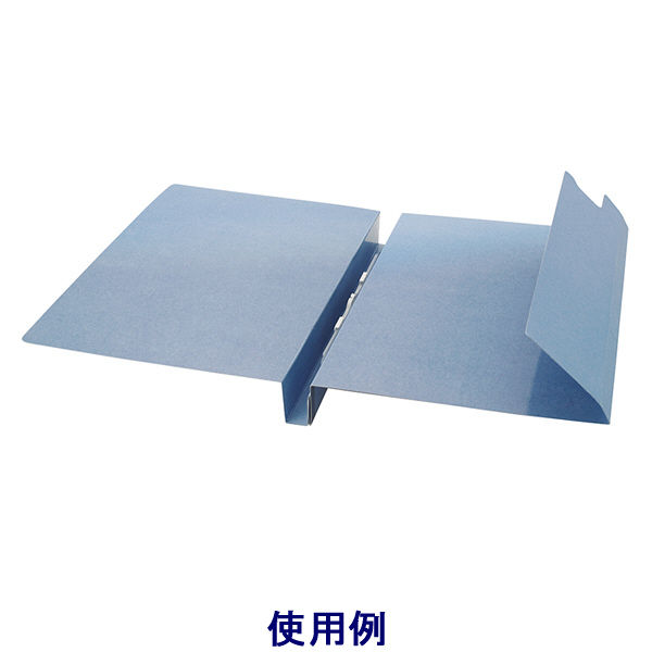 フラットファイル 見分録 ブルー 30冊