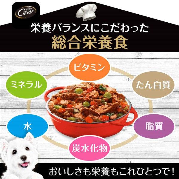 シーザーおうちレシピビーフ野菜×12