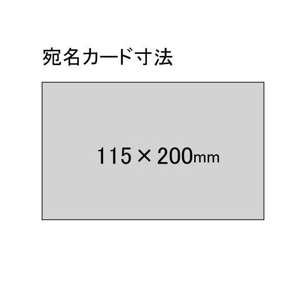 社内便ケース A4メール便サイズ青10冊