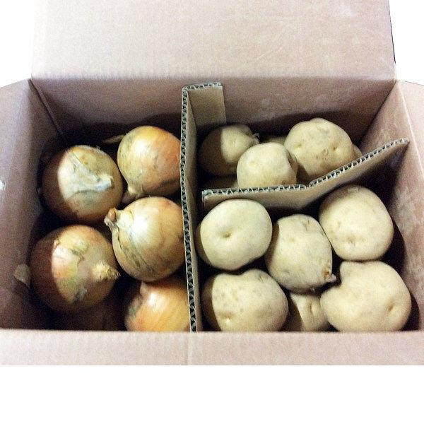 北海道産 秋の味覚セット 約5kg