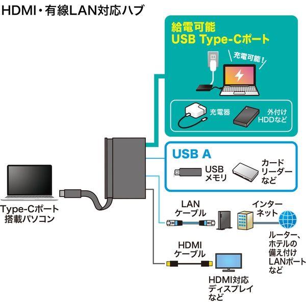 サンワサプライ USB Type-Cドッキングハブ USB-3TCH16BK 1個(直送品)