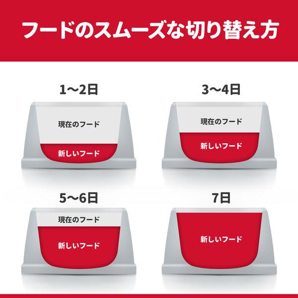 SD アダルト ラム&ライス 6袋