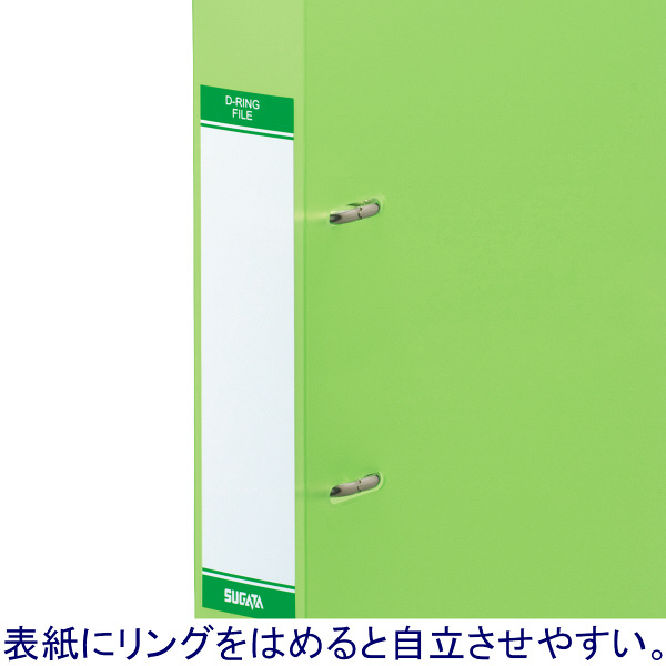 D型リングファイル A4縦 緑 10冊