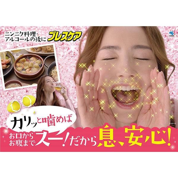 噛むブレスケア スッキリクールミント