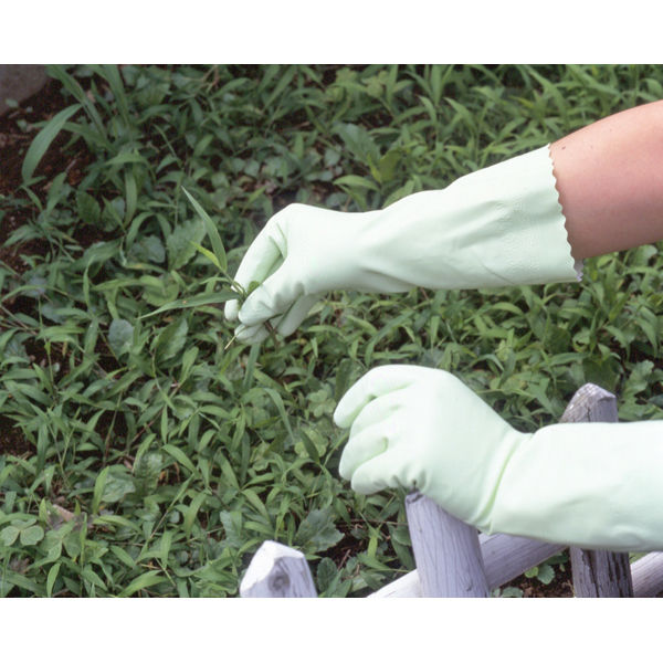 塩化ビニール手袋 簡易包装ワーキング中厚手 L グリーン 30双 「現場のチカラ」 111 ショーワグローブ