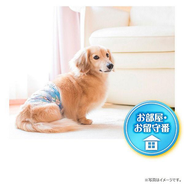 マナーウェア男の子用超小型犬用52枚×8
