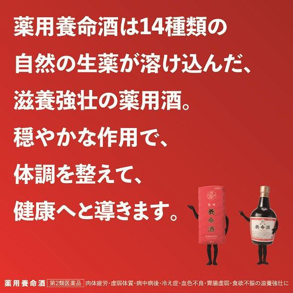薬用養命酒 700ml
