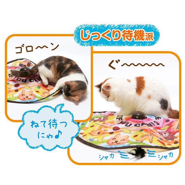 猫用キャッチ・ミー・イフ・ユー・キャン2