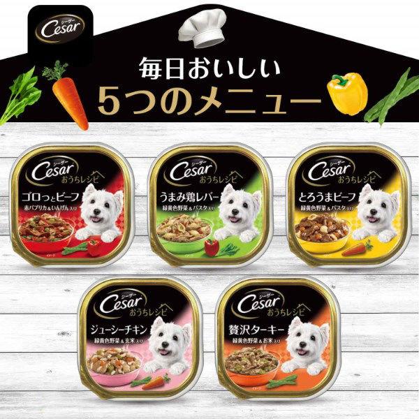 シーザーおうちレシピ ターキー野菜×12