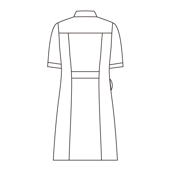住商モンブラン ラウンドカラーワンピース ナースワンピース 医療白衣 半袖 ホワイト×ネイビー LL 73-1958 (直送品)