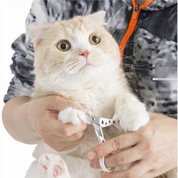 ストレスなくスパッと切れる猫用爪切り