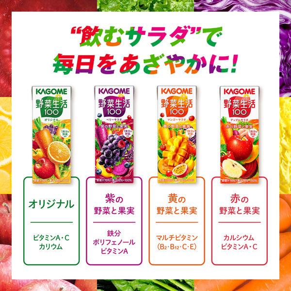 アップルサラダ 200ml 24本
