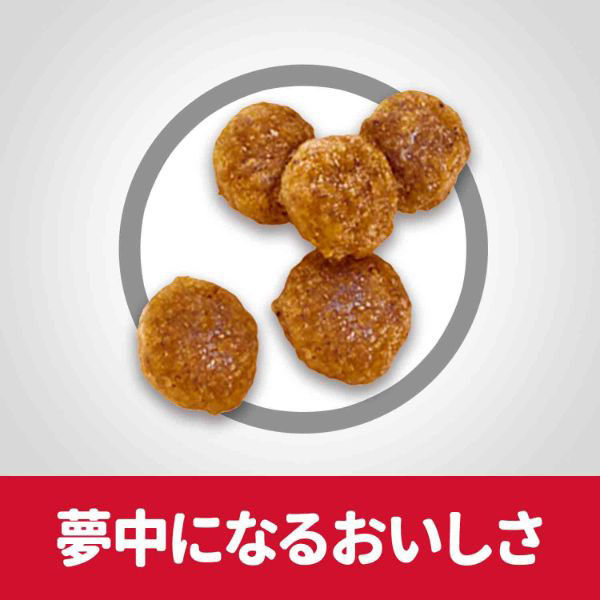 SDプロ犬用 活力 1~6歳 成犬 小粒