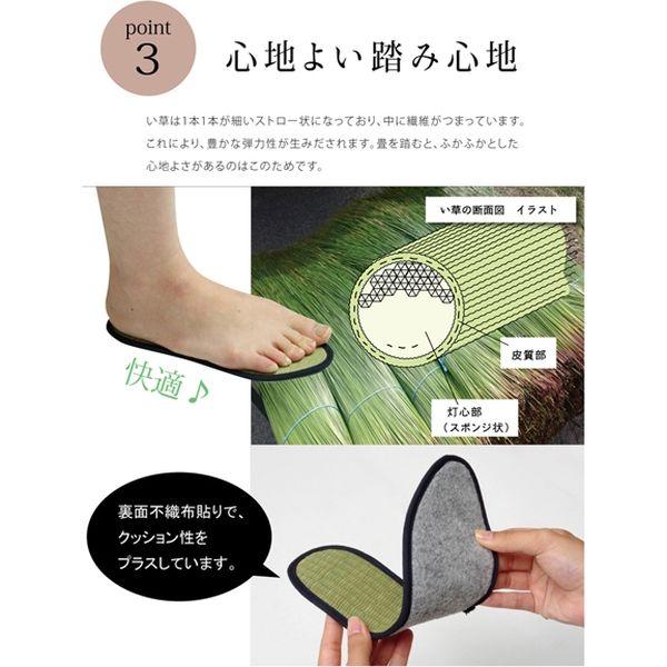 インソール レディース 消臭 抗菌 『い草インソール』 ネイビー 約23cm(直送品)