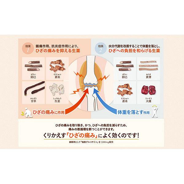 太田胃散 ロコフィットGL 260錠